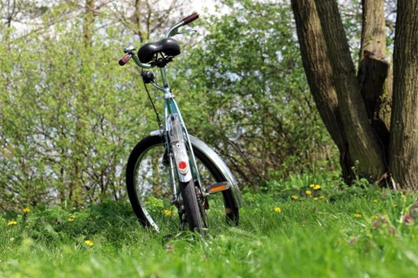 Lausitzer Radwandertage